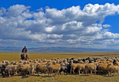 Киргизия стремится к автаркии